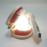 Intraoral Light