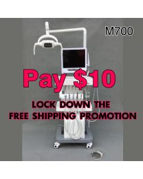 Pay $10 lock down the free shipping promotion
